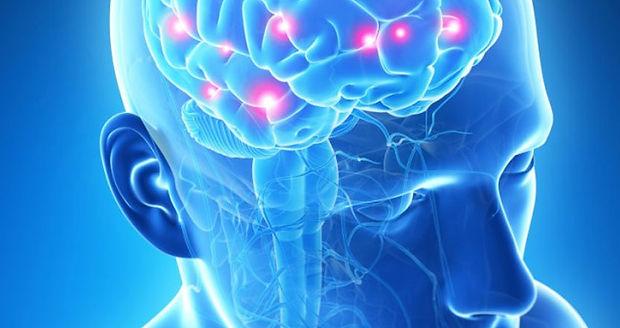 Neurologia CMCI.jpg