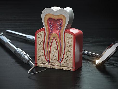 parodontologia-1.jpg