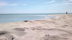 our beaches