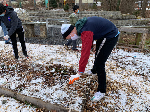 Students Participate in Community Service on MLK Day