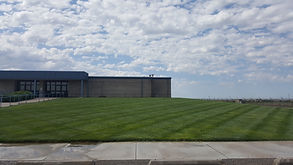 yard spraying, lawn spraying, yard care, lawn care, lawn maintenance, lawn programs, grub prevention, grubs, grub treatment, fertilizing, weed control