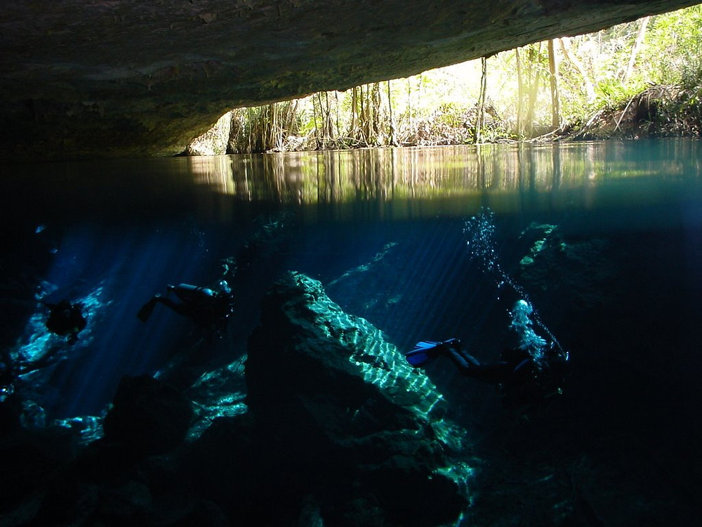 It is an ideal cenote to dive. If you have only practiced diving in the open sea in the Cenote Chac Mool