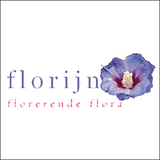 FlorijnGroen.png