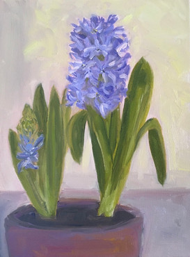 Blue Hyacinths 2021
