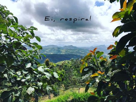 UMA REZA E UM CONVITE: um texto de Letícia Bailante