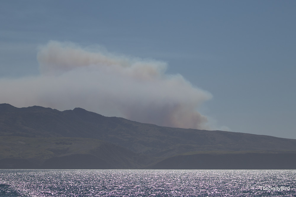 Fire on Santa Cruz Island