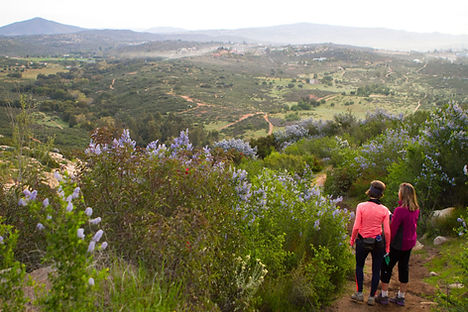 Rancho La Puerta Fitness Resort & Spa boasts 4,000 acres of land, including 40 miles of hiking trails, landscaped gardens as well as an organic farm with a cooking school.