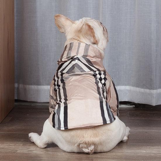 High Fashion Dog Clothes