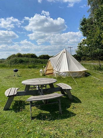 Tent, picnic table and BBQ
