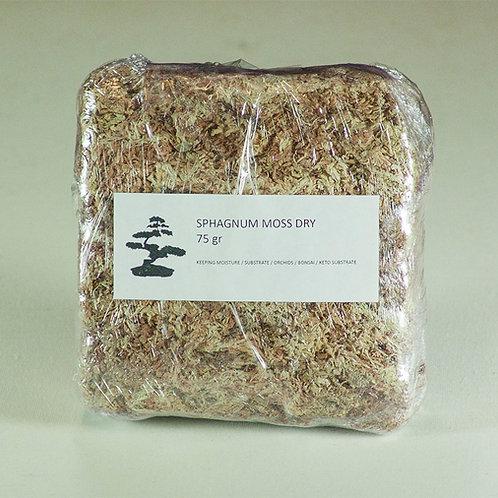 Sphagnum moss dry 75gr
