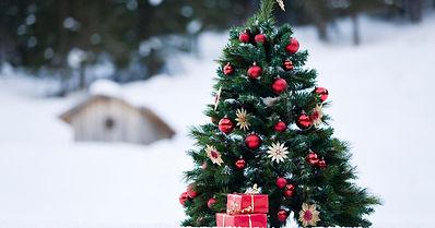 weihnachtsbaum-geschmueckt-schnee-000783