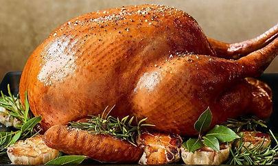 ms-turkey.jpg