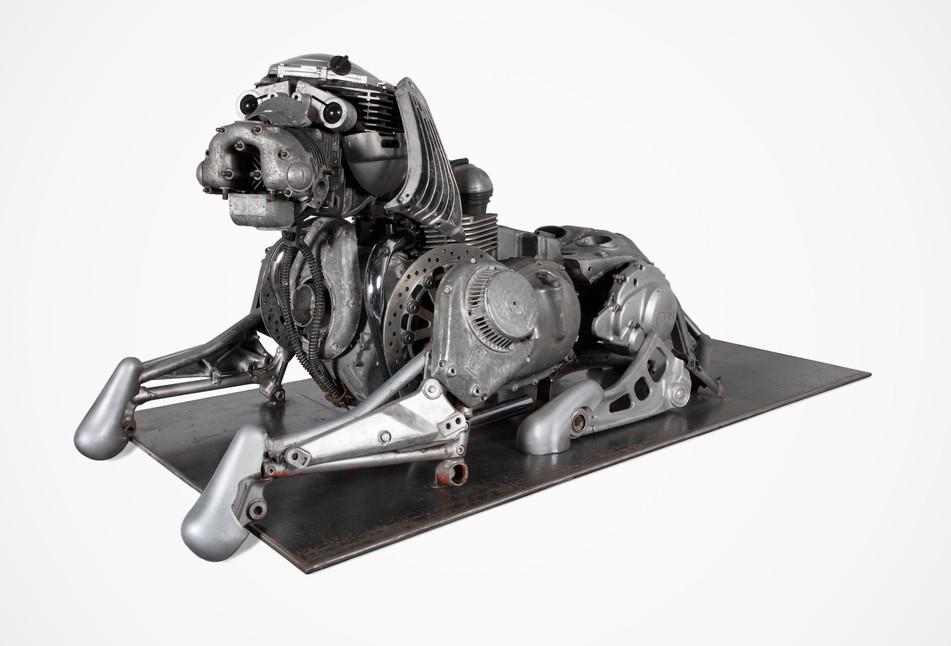 joe-rush-dog-3.jpg