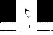 logotipo_Branco_Fundo Transparente_GANSO