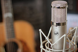 WA47jr Microphone
