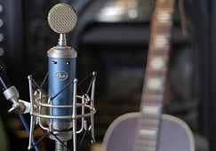 Bluebird SL Microphone