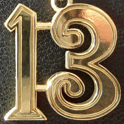 VINTAGE LUCKY CHARM / NUMBER 13 PENDANT