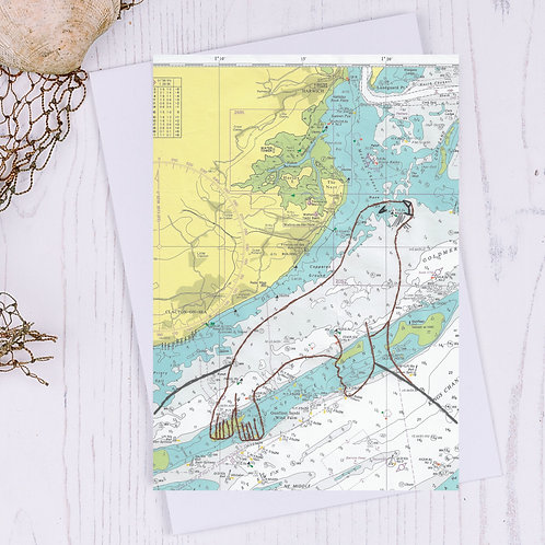 Walton Backwaters Seal Greetings Card
