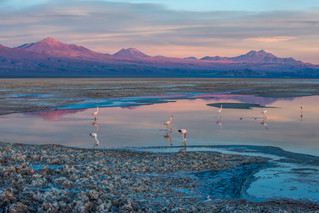 Adventure with a Side of Luxe: An All-Inclusive Oasis in the Atacama Desert