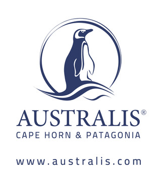 Australis Promotion - The 2019 Early Penguin Has Arrived!