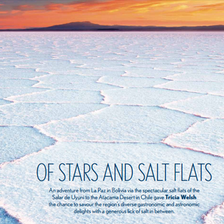 Of Stars and Salt Flats - Sundowner Magazine by Tricia Welsh