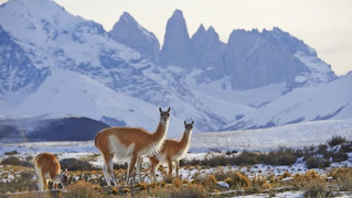 13 must-do adventures in Patagonia, the 'Outback' of South America