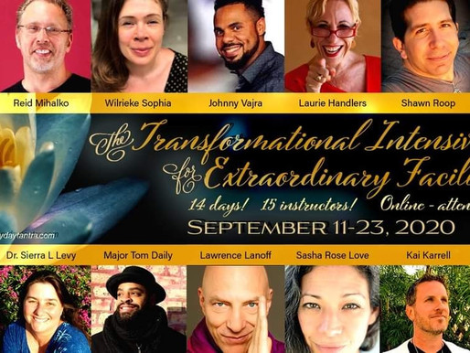 The Transformational Intensive for Extraordinary Facilitators!