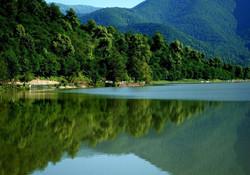 Lopota Lake resort. Tour Tbilisi and Batumi