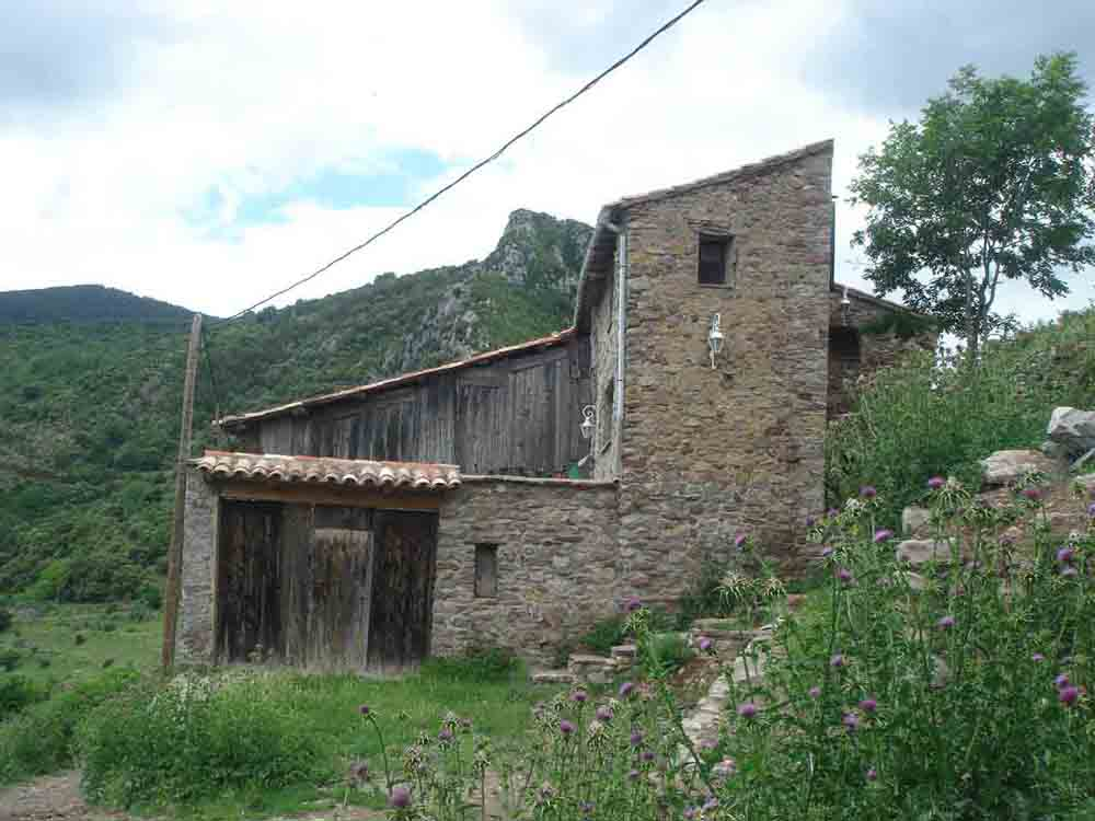 01 FALCÓ cérvoles 2010-06-12 098.jpg