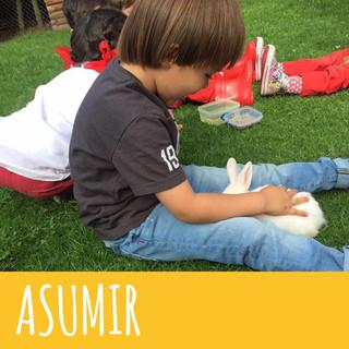 ASUMIR