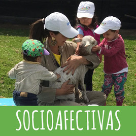 SOCIOAFECTIVAS