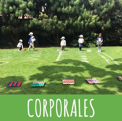 CORPORALES