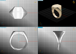 CAD Signet Rings Are Very Popular.