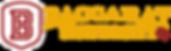 Baccarat University logo (1).png