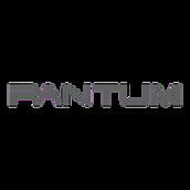 Ремонт принтеров Pantum