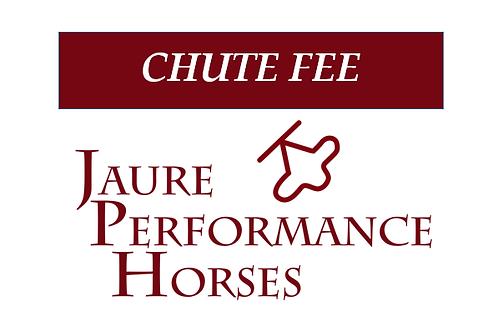 Chute Fee - Stallion Service