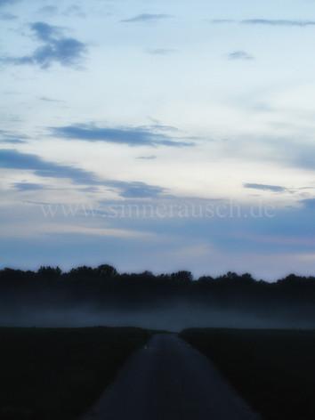 Nebelweg-T.jpg