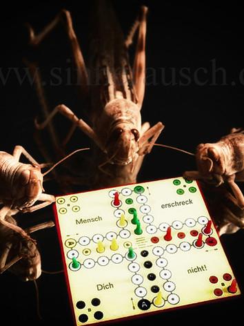 Schrecke-ärger-02-K.jpg