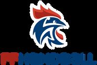 ffhandball-logo.png