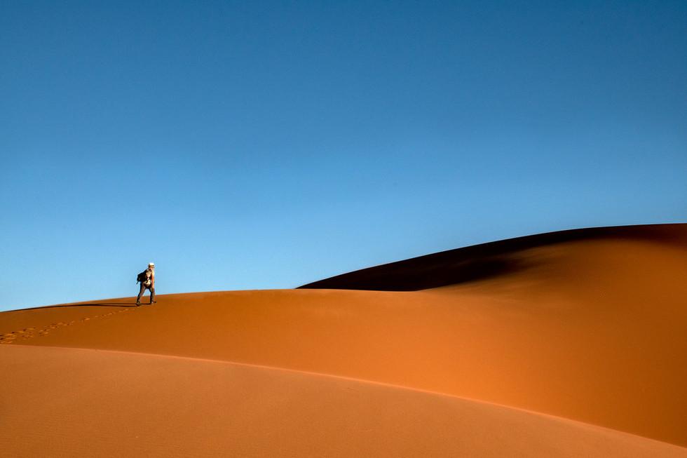 Wandering Traveller