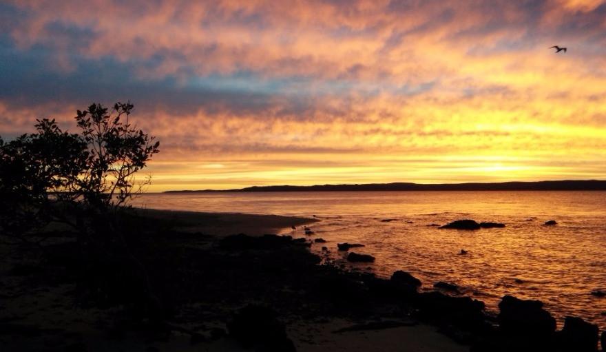 Sunset over Coochiemudlo Island