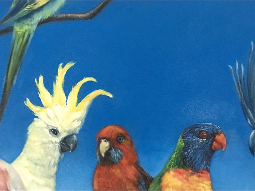 Life in 'The Land of Parrots'