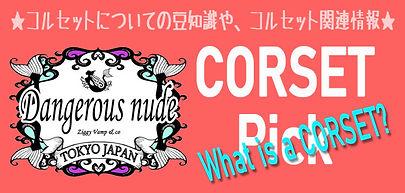 コルセットピックR.jpg