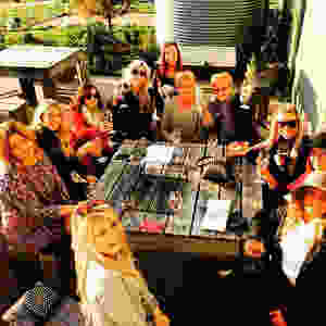 Daylesford Wine Tours fun in the sun
