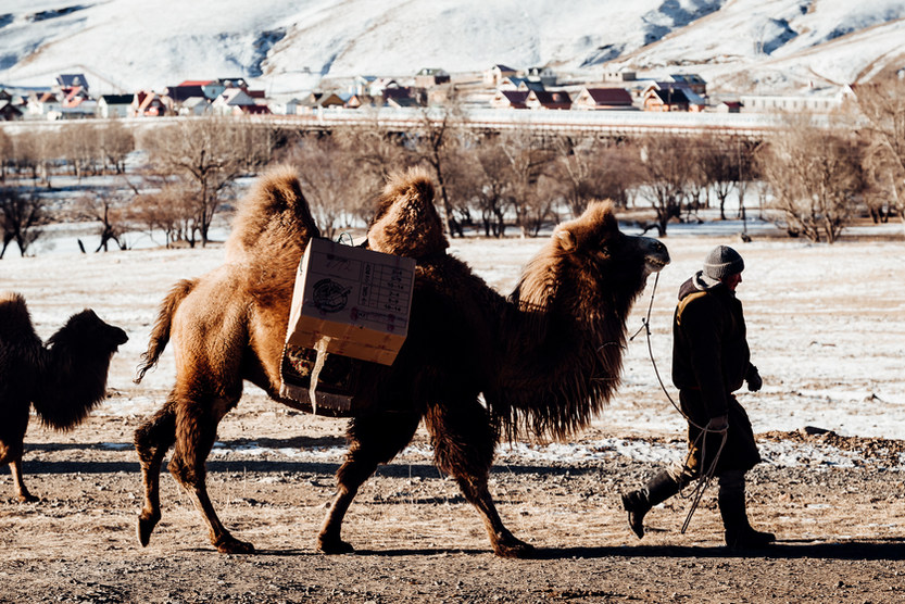 Operation Christmas Child boxes being transported for distribution to kids in Mongolia. Photo: David Vogt.