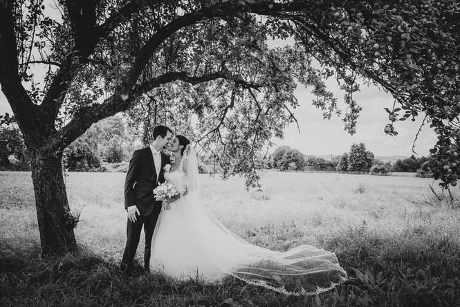 Sayali + Christoph im Apfelhain - Hochzeitsfotografie David Samuel Vogt