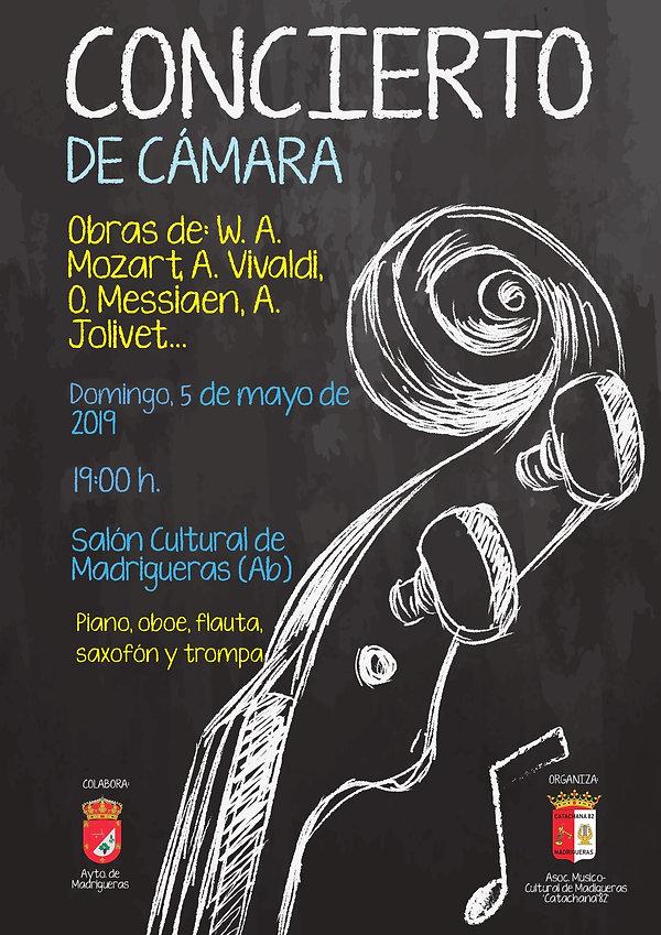 CARTEL CONCIERTO CAMARA.jpg