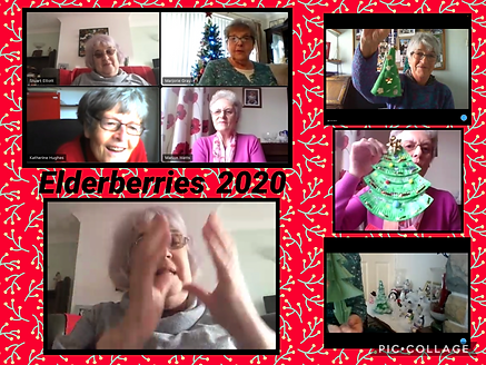 elderberries xmas trees.png