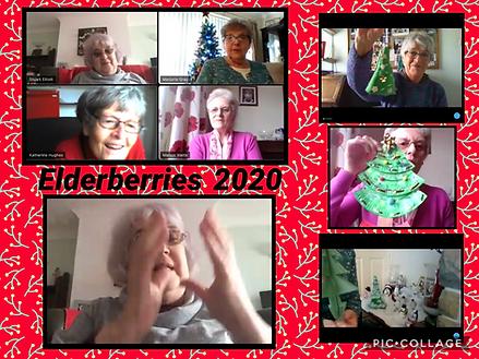 elderberries xmas trees.png