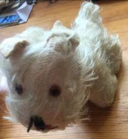 katherines scottie dog.jpg